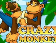 Crazy Monkey Spielautomat